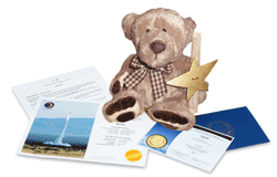 Star Bear Gift Set with Digital Star Certificate